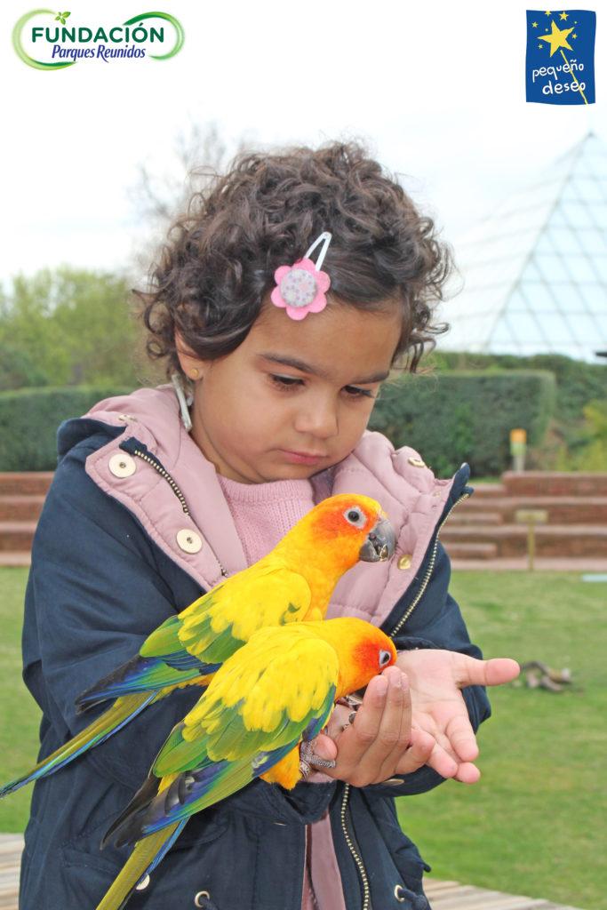 Valentina dando de comer a aves exóticas.
